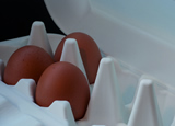 Mareco Rapid Prototyping, Egg box